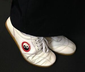 Professional Tai Chi , Qigong, kung fu really leather shoes