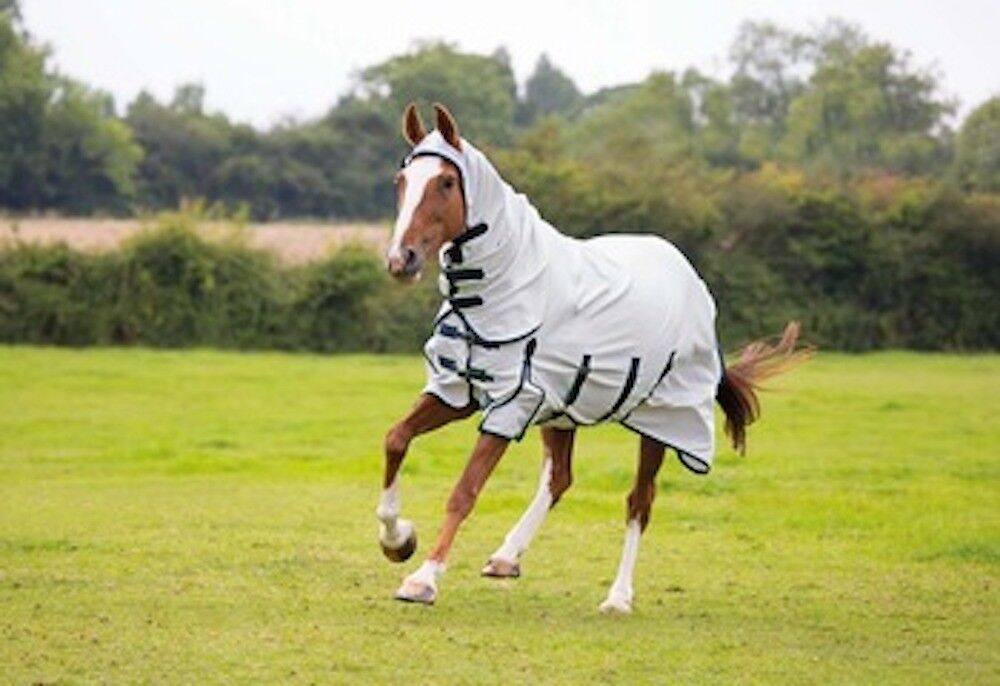 Shires Sweet-Itch Combo Fly Sheet-78