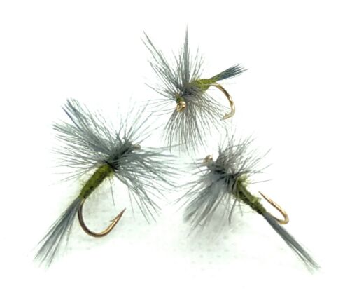 3 BLUE WINGED OLIVE Dry Flies BWO Mayfly DUN Trout Fly Fishing Size 10,12,14,16