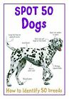Spot 50 Dogs by Miles Kelly Publishing Ltd (Paperback, 2012)