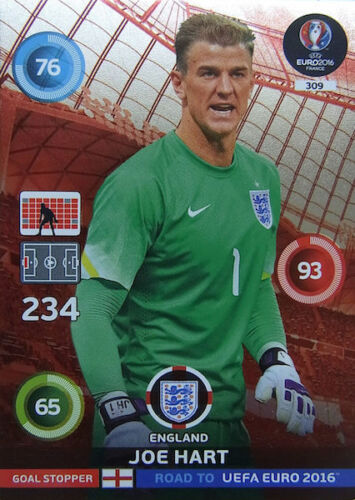 PANINI adrenalyn xl road to l'UEFA EURO 2016 trading cards objectif bouchons 307-315