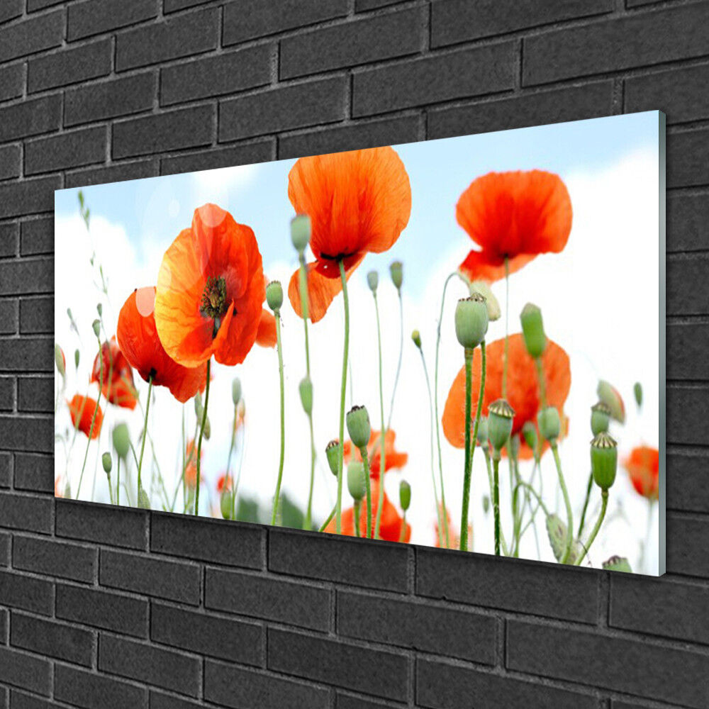 Print on Glass Wall art 100x50 Picture Image Poppies Floral
