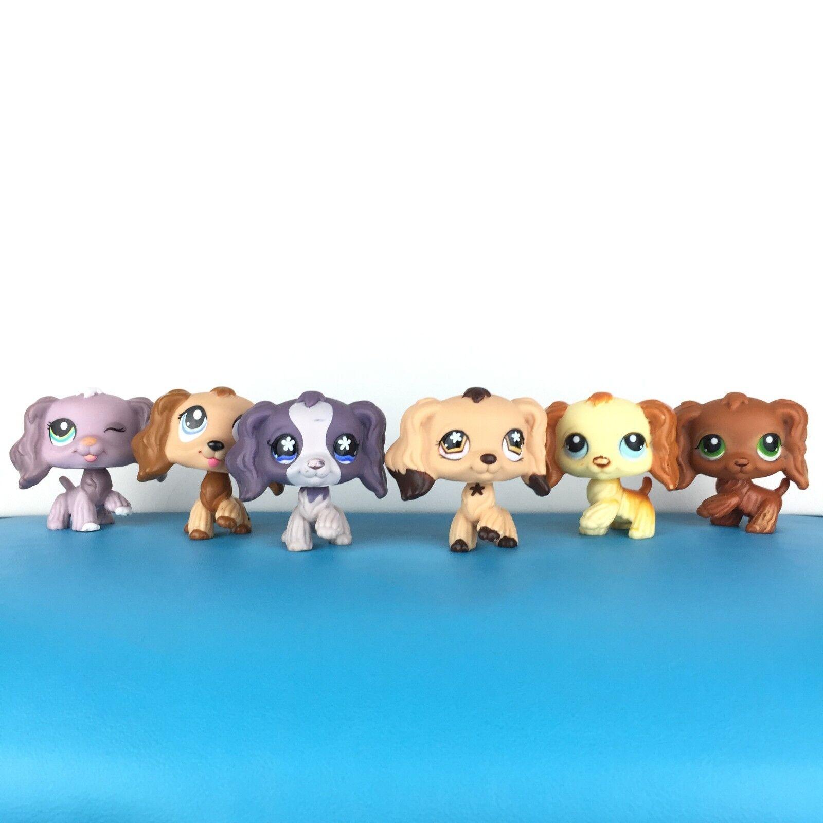 La tienda de mascotas  masa 6 pequeñost  1373 672 575 298 252 perros cam LLS.