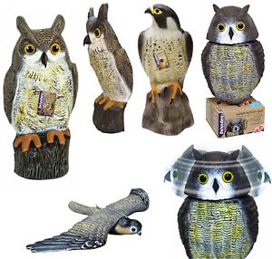 Impartial Decoy Falcon & Vent Action Hibou épouvantail Jardin Animal Crow Dissuader Répulsif Neuf-afficher Le Titre D'origine Bien Vendre Partout Dans Le Monde