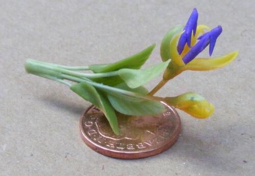 1:12 Scale Yellow /& Purple Bird Of Paradise Flower Tumdee Dolls House Garden