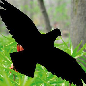 Vogelaufkleber schwarz Vogelschutz Vogelschreck für Fenster Vögel abwehren Türen