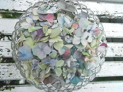 10 Cups Dried Hydrangea Petals, Wedding, Flower Girl, Confetti, Potpourri, Craft Aantrekkelijke Mode