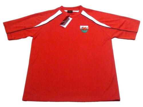 New Men/'s Wales Welsh Cymru Dragon Sheild Euros Panel Crew Neck T Shirt Top