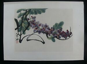 034-Wisteria-034-After-Qi-Baishi-c-1950-039-s-Chinese-Watercolour-amp-Woodblock-Print