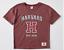 GIRLS-Size-12-Burgundy-HARVARD-Tee-t-shirt-top-amp-Khaki-print-shorts-NEW thumbnail 3