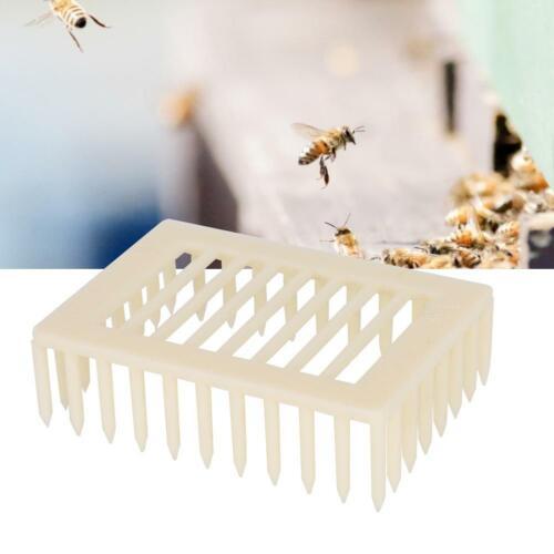 20Pcs Plastic Beekeeping Rearing Box Queen Bee Cages Beekeeper Equipment Tools