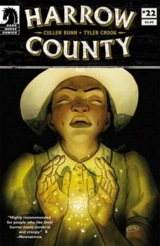 2017 Dark Horse  Comic Harrow County #22 NM Vault 35