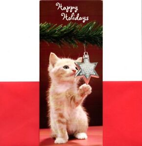 Kitten Christmas Cards.Details About Kitten Plays With Tree Ornament Merry Christmas Greeting Cards Set Of 7