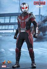 ANT-MAN Hot Toys 1/6 Figure (Captain America Civil War) paul rudd UK MEGA SALE
