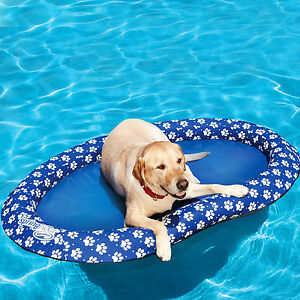 Pet Dog Pool Float Large Puppy Raft Water Swimming