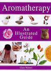 Aromatherapy by Claire Walters (Paperback, 1998)