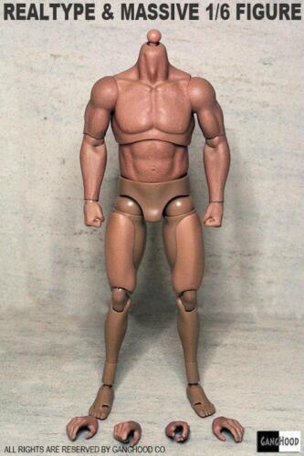 GangHood 1//6th realtape/&massive Muscular Body For HT Bane Arnold Head Sculpts