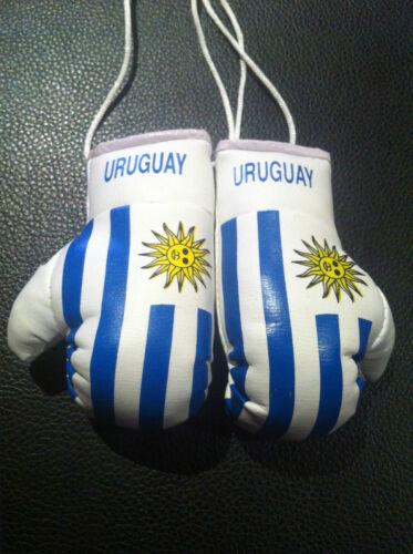 URUGUAY FLAG Mini Boxing Gloves *NEW*