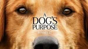 "002 A Dogs Purpose - Adventure Comedy 2017 USA Movie 42""x24"" Poster"