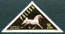 POLAND 1963 20g SG1433 used FG Polish Horse-breeding Arab stallion Comet a #W27