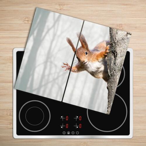 Glas-Herdabdeckplatte Ceranfeldabdeckung Zweiteilig 2x30x52 Eichhörnchen