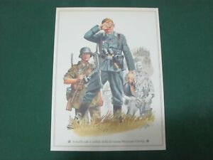 Vintage-Warrant-Officers-and-Soldiers-of-Division-Hermann-Goring-21x28