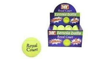MY-Royal-Court-Tennis-Balls-24pk-Sport-Training-Game-training