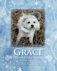 Grace, the Other Christmas Angel by Dian Vujovich (Paperback / softback, 2010)
