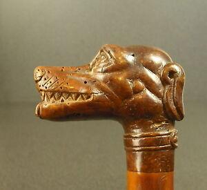 Cane-in-Pommel-Tete-de-Dog-Laughing-Cane-Laughing-Dog-Head-Pommel-Hundekopf-76cm