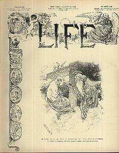 1908-Life-8-13-Teddy-039-s-mad-at-the-Court-Newport