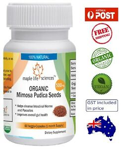 ORGANIC-Mimosa-Pudica-Seeds-Capsules-Removes-Parasites-and-Worms-AU-Stock