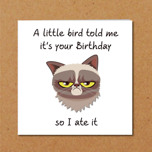 Image Is Loading Grumpy Cat Birthday Card For Anyone Who Loves