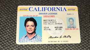 Back-to-the-Future-Marty-McFly-ID-Michael-J-Fox-License-Prop