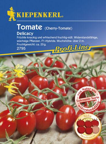 F1 Kiepenkerl Mini San Marzano Tomate Delicacy