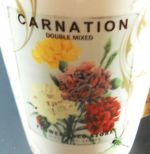 Carnation-American-Atelier-at-Home-Coffee-Mug-Spring-Garden-Earthenware
