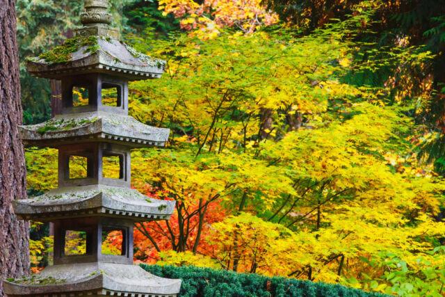 Autumn Colours Japanese Garden Portland Oregon Photo Art Print Poster 18x12 For Sale Online Ebay