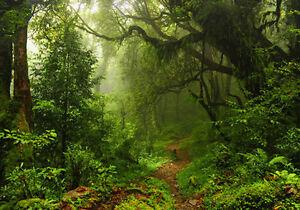 Jungle Green Nature Rainforest 3D Full Wall Mural