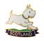 Indexbild 1 - Westie West Highland Terrier Schottland Flagge Anstecker