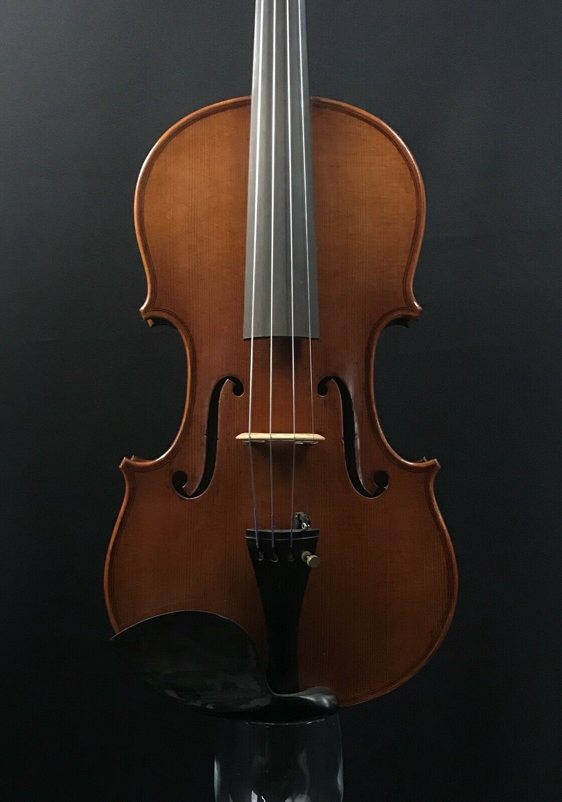 "Beautiful 4 4 Violin Labeled ""Sevcik"" -Fluted f-holes"
