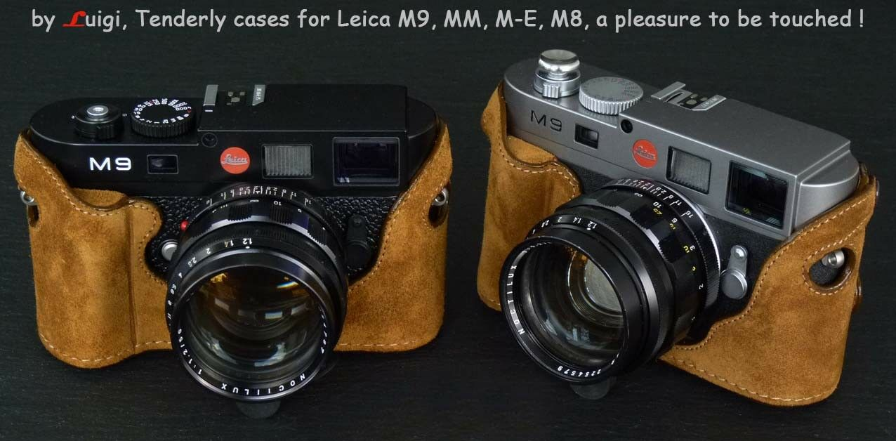 LUIGI/'s CASE for LEICA D-LUX6,WITH MY BUILT-IN-GRIP,HANGING REAR DOOR,STRAP,UPS.