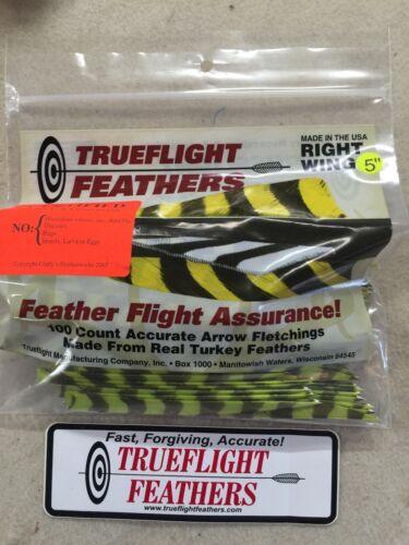 PLUMES AILE DROITE Shield Cut Pack de 50 Chartreuse Barred Trueflight 5 in environ 12.70 cm