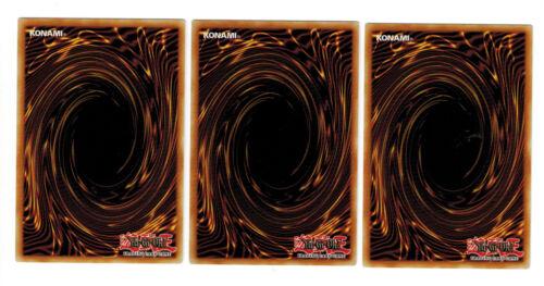 Boosterfrisch 1 Common Auflage 3 x Valkyre Des Magiers LDK2-DEY17