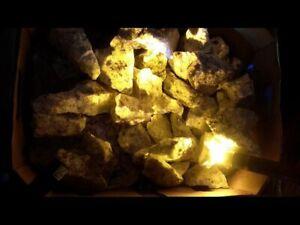 Quebec Grenville A Grade Wernerite Specimen Bright Yellow LW Fluorescent