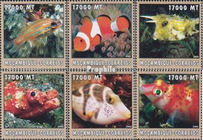 Never Hinged 2002 World Of Marine Mozambique 2644-2649 Unmounted Mint Animal Kingdom