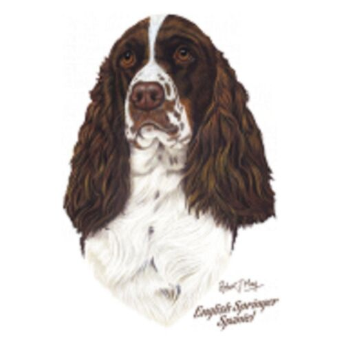 English Springer Spaniel May T Shirt Pick Your Size Youth Medium to 6 X Large