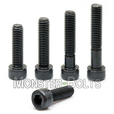 "Socket Head Caps Screws SAE Alloy Steel w Black Oxide Qty 10 1//4-20 x 1-1//2/"""