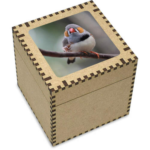 Trinket Box Large /'Zebra Finch/' Jewellery JB00005310