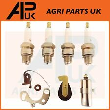 Ferguson TE20 TEA TED Tractor Engine Oil Pump Rotor And Shaft Kit 827501M91