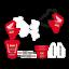 kit-adesivi-completi-grafiche-moto-cross-Team-Honda-Cr-125-250-1992-1993-1994 Indexbild 1