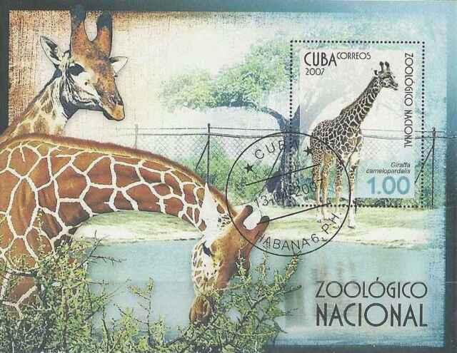 Timbre Animaux Girafes BF223 o lot 3752